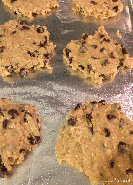 Oatmeal_Chocolate_Chip_07
