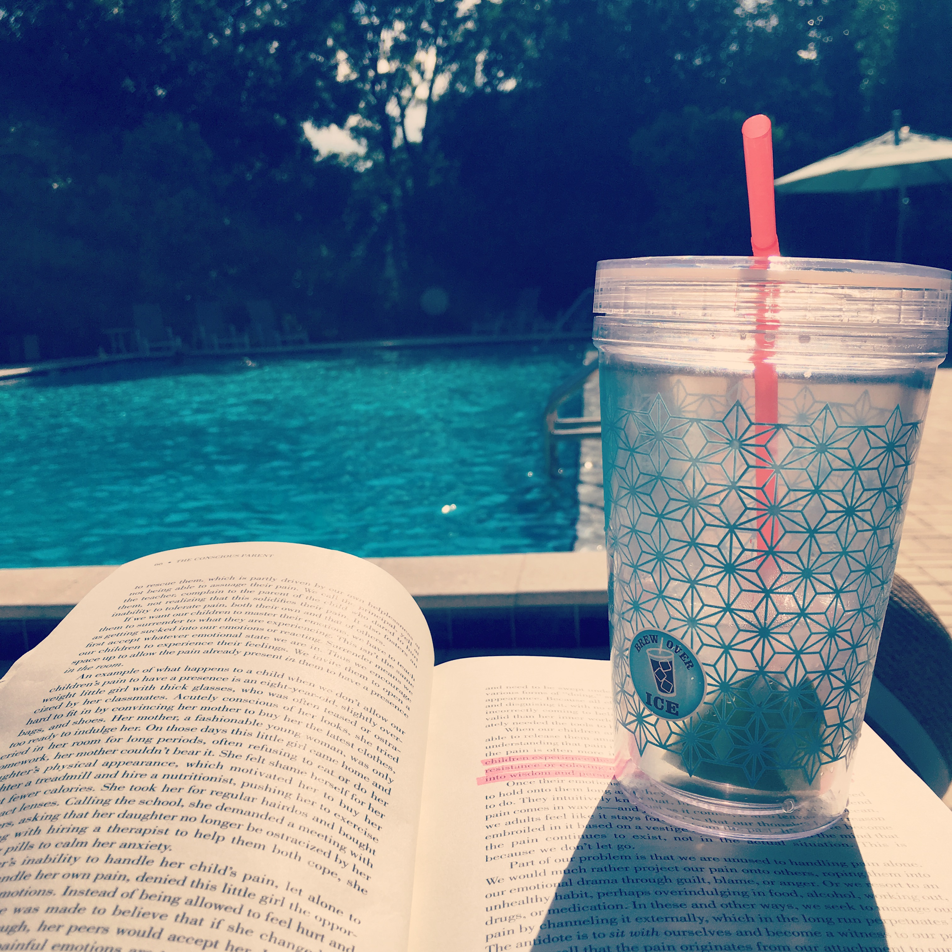 "Sun, swim, Moscow Mule & ""The Conscious Parent"" by Dr. Shefali Tsabary, Phd 
